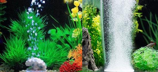 bulleur aquarium