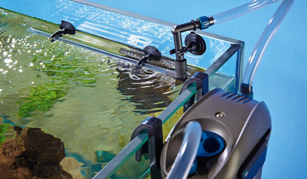 Filtration extérieure aquarium